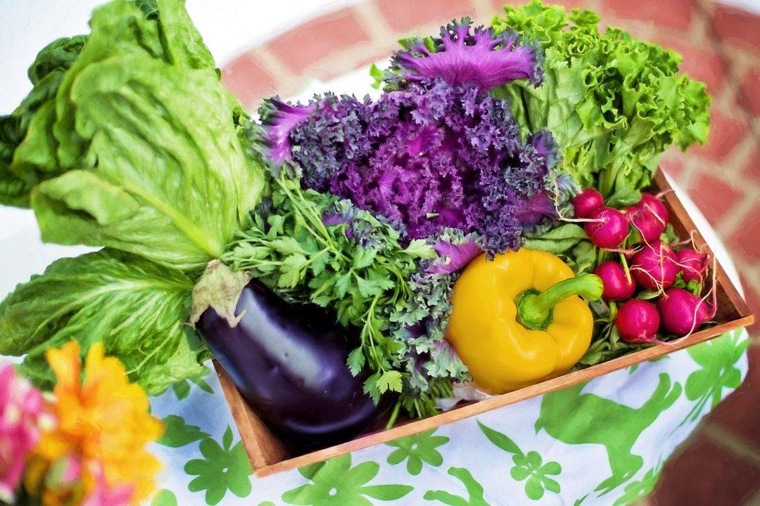 pesticide pentru protectia plantelor