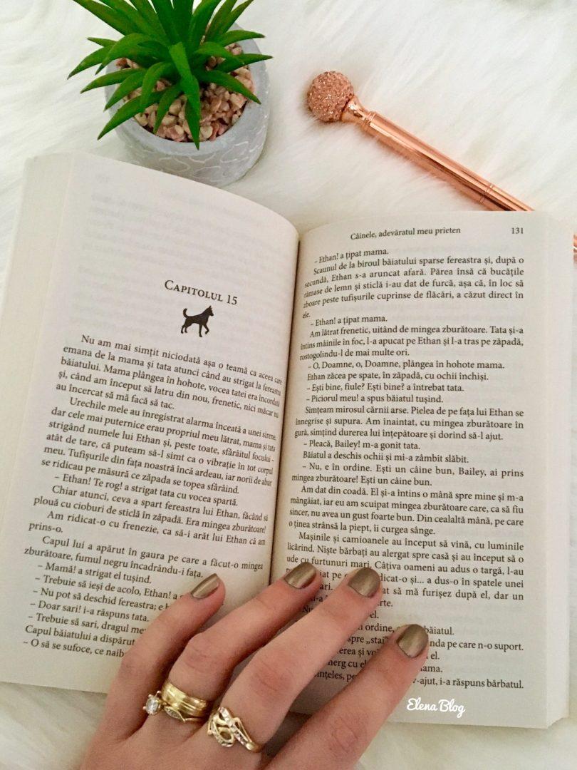 recomandare de lectura